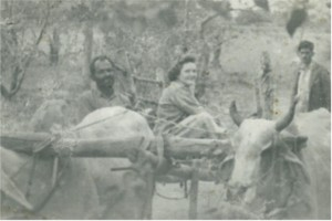 Mom was game for just about anything. Here she is riding a bullock cart in Jhansi.